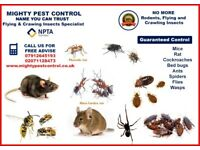 BPCA - RSPH Qualified 100% Guaranteed Pest Control Services Bed Bugs Flea Cockroaches Mice Wasps