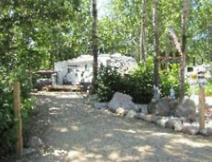 Well treed campsite available