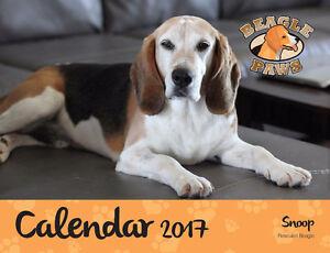 Beagle Paws Calendar St. John's Newfoundland image 1