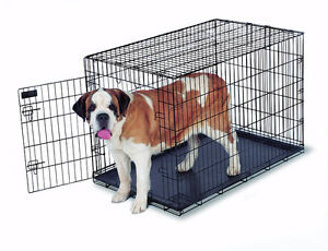 """Large Dog Crate 48"""" x 30"""" 33 Sell ASAP"""