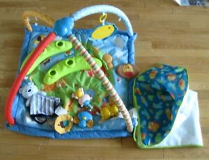 Baby/Infant Activity Gym and Mat