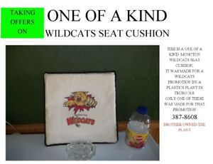 only one made--- wildcats seat cushion