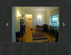 Lease transfer of 3.5 apartment in McGill Ghetto!