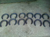 NEW Eventer style horse shoes