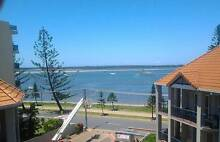 Room in awesome unit, Biggera Waters Biggera Waters Gold Coast City Preview