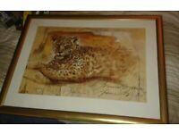 lardge framed tiger picture in a woodern golf frame