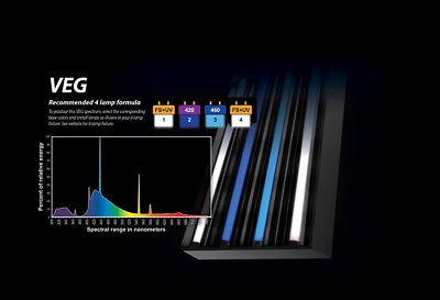 PowerVEG T5 HO 4FT Bulbs for 4-Light Best Set-up for VEG (Grow, EYE (Best Grow Light Ballast)