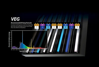 PowerVEG T5 HO 4FT Bulbs for 8-Light Best Set-up for VEG (Grow, EYE (Best Grow Light Ballast)