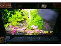 LG 43 inch 4k smart tv