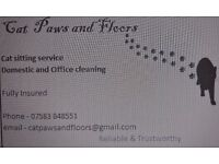 Cat Paws and Floors - Domestic/Office Cleaning