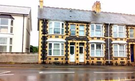B&B/Family/Student Opportunity near stunning beaches - 3 to 5 bed