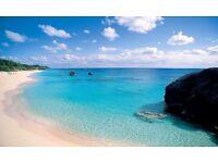 Florist Opportunity in Beautiful Bermuda