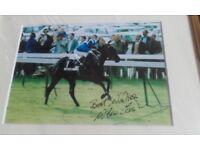 HORSE RACING WILLIE CARSON SIGNATURE