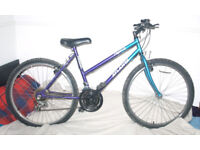 """15 Speed Adults Mountain Bike 19"""" frame shamano gears - great condition 26"""" wheels"""