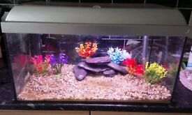 2ft tropical or coldwater fishtank aquarium