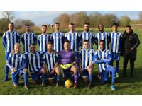 St Albans sunday league football team - Players needed