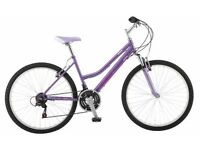 Probike CHARISMA Womens / Girls Mountain Bike RRP £149 NEW comes with FREE SERVICE