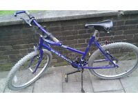 """RALEIGH STRATOS ADULT BIKE 26"""" GOOD CONDITION & DILIVERY IS POSSIBLE EXCLUDED CHARGE"""
