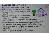 Reliable and easy tenants seek a new home