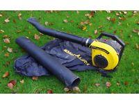 McCulloch Petrol Leaf Blower & Vacuum