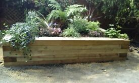 Garden Maintenance, Design & Thorough Clean Ups