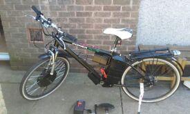 Electric bike S&R