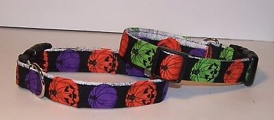 Wet Nose Designs Colorful Halloween Jack O Lanterns Dog Collar Pumpkins on Black