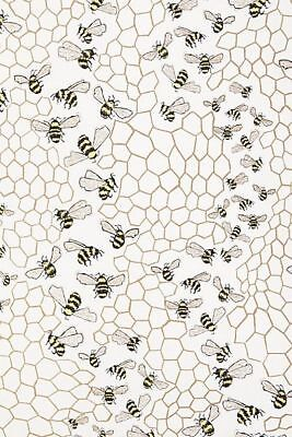 Insects Wallpaper (Anthropologie Wallpaper BEE COLONY Insects Bugs Honeycomb Gold Yellow USA)