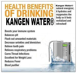 Enagic Kangen Water Ironizing System-Windsor Region