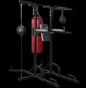 Chin Up Dip Station Gym Amp Fitness Gumtree Australia