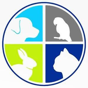 Boarding For Small Dogs Noarlunga Downs Morphett Vale Area Preview
