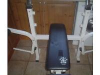 Words gym flat-incine bench