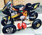 Buccimoto Mini-GP BR10-GP circuit bike
