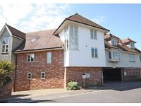 Immaculate 3 bedroom / 3 bathrrom Townhouse m- Lymington