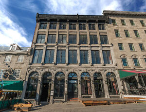 Place Jacques Cartier Office Space Available Immediately!