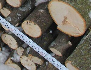 Fire wood Kitchener / Waterloo Kitchener Area image 7
