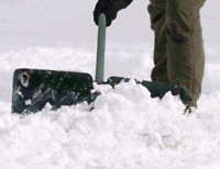 Taking snow removel contracts