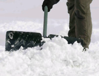Snow removal and shoveling starting at $50.00