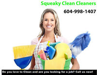 Cleaner Professional House Cleaning Services