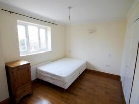 STUNNING DOUBLE ROOM ON FALCONERS ROAD FOR RENT!