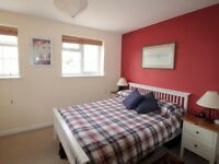 For rent lovely double room fully furnished in Sutton town.