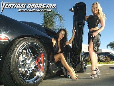 1984-1988 Pontiac Fiero Lambo Vertical Door Hinges We Entertain ALL Offers!!!