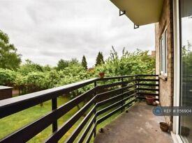 2 bedroom flat in Hills Road, Cambridge, CB2 (2 bed) (#1156904)