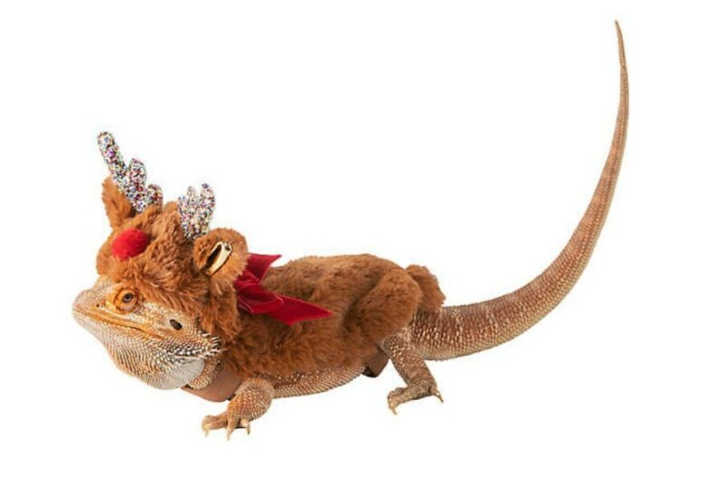 Merry & Bright Reptile Reindeer Holiday Costume ideal for Bearded Dragons
