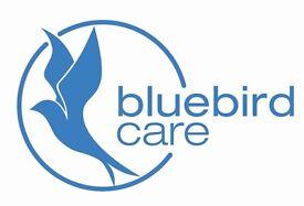 Experienced Care Coordinator