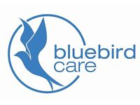 NEW YEAR CARE WORK OPPORTUNITIES - £8 - £8.50 per hour