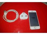 iPhone 5s silver 16gb unlocked