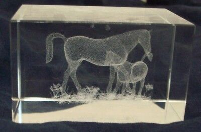 Clear Art Glass Paperweight Lazer Etched 3D Horses Home Decor -
