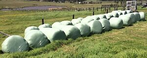 Oaten silage round bales, wrapped Singleton Singleton Area Preview