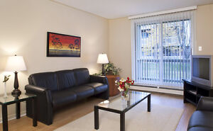 Spacious Fully Furnished 2 Bedroom Apartments